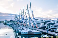 A slender row of yachts in the port of Sochi. royalty free stock photos