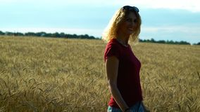 A slender woman walks on a wheat field and smiles on a Sunny summer day. A slender sweet woman walks on a wheat field and smiles on a Sunny summer day stock footage