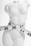 Slender waist. Female torso from plaster on a white background Stock Image