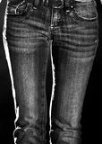 Slender woman in jeans Stock Images