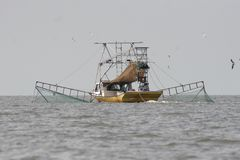 Slepende boot die garnalen in Vermillion baai in Louisiane vangen stock foto