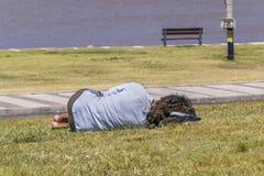 Slepping privo ad erba in parco fotografia stock