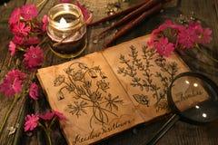 Sleutelbloembloemen met kruidenkaarsen en agenda met tekeningen van magische installaties op planken stock foto