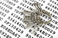 Sleutels op een blad met gecodeerde gegevens Royalty-vrije Stock Afbeelding