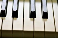 Sleutels van zich een digitale piano, het zachte concentreren, een creatieve stemming van een persoonsimprovisatie en een creativ royalty-vrije stock foto