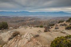 Sleutelsmening in Joshua Tree National Park Stock Foto