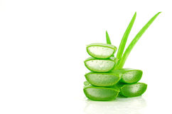 Slice Aloe Vera. Stock Image