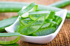 Slice Aloe Vera. A very useful herbal medicine for skin care and hair care Royalty Free Stock Photos
