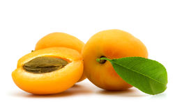 Slice apricot Stock Photography