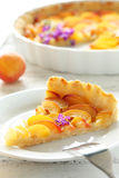 Slice of apricot pie Stock Photos