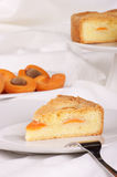 Slice of apricot tart Royalty Free Stock Image