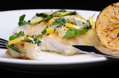 Slice of baked fish pike perch. Slice of baked fish perch with herbs and lemon slices Royalty Free Stock Photo
