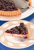 Slice of Blueberry Cheesecake Royalty Free Stock Photo