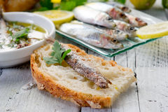 Slice bread with anchovy Royalty Free Stock Photography
