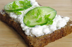 Slice of bread with cottage cheese Stock Photography