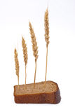 Slice bread with ears Royalty Free Stock Photos
