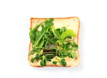 Slice of bread with fresh salad greens Royalty Free Stock Photo