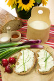 Slice of bread spread with sheep cheese. A slice of bread spread with sheep cheese (bryndza) with chives Royalty Free Stock Photography