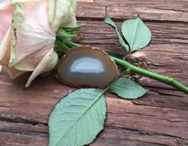 A slice of Brown Agate with a rose flower. Brown Agate crystal with a rose flower on a wooden background Stock Image