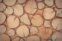 Slice of Brown Wooden Log Royalty Free Stock Photo