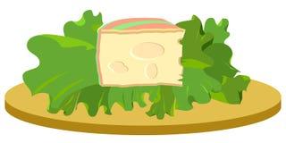 Slice of cheese on salad illustration royalty free stock photo
