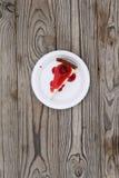Slice of cherry cheesecake Stock Images