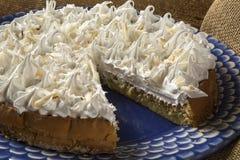 Slice of Chestnut pie Royalty Free Stock Photo