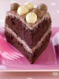 Slice of Chocolate Malteser Cake Stock Images