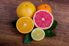 Slice citrus fruit. Citrus fruit  lemon, orange, grapefruit and tangerine with leaves Stock Images