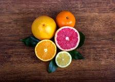 Slice citrus fruit. Citrus fruit  lemon, orange, grapefruit and tangerine with leaves Royalty Free Stock Images