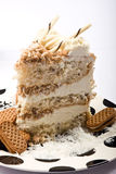Slice of coconut cake Stock Images