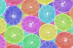 Slice colorful lime Royalty Free Stock Image