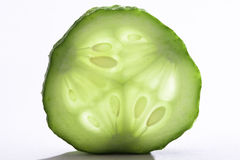 Slice of cucumber Stock Images