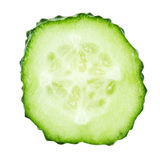 Slice of cucumber isolated on white Stock Photography