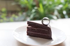Dark chocolate cake. tasty delicious dessert on white plate. hom Stock Image