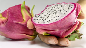 Slice of dragon fruits on hand/ Healthy fruits. NThis is the pitya – dragon fruit – indigenous to Central America but is also grown and exported stock photo