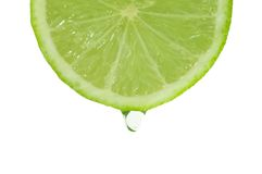 Slice of dripping Lime fruit. Cross section of juice dripping from ripe Lime fruit, isolated on white background Royalty Free Stock Images
