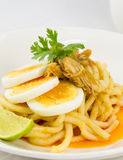 Slice egg chicken noodle Stock Image