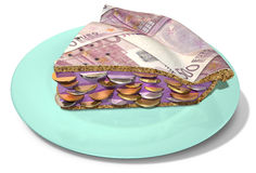 Slice Of Euro Money Pie Stock Photography