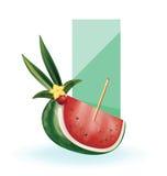 Slice of exotic fruit decorated realistic isolated Royalty Free Stock Photo