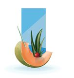 Slice of exotic fruit decorated realistic isolated Royalty Free Stock Photography
