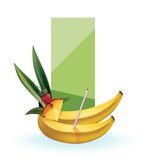 Slice of exotic fruit decorated realistic isolated Royalty Free Stock Images