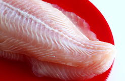 Slice of fish Royalty Free Stock Images