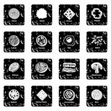 Slice food icons set grunge vector. Slice food icons set vector grunge isolated on white background Royalty Free Stock Images