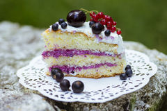 Slice of fresh berry cake Stock Photos