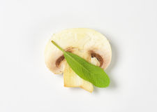 Slice of fresh button mushroom. Slice of raw button mushroom and fresh sage leaf Stock Image