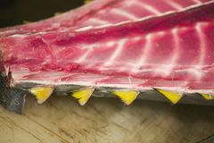 Slice of fresh fish. Cought in Japan Royalty Free Stock Photography