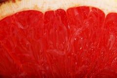 Slice of fresh juicy grapefruit Stock Photography