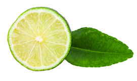 Slice of fresh kaffir lime fruit with leaf Royalty Free Stock Images