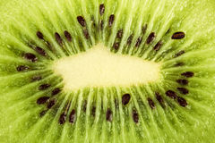 Slice of fresh kiwi fruit Royalty Free Stock Image